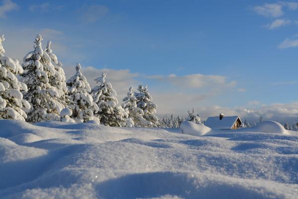 firn-schnee