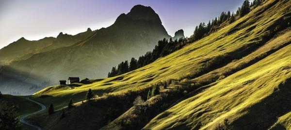 bergschulter